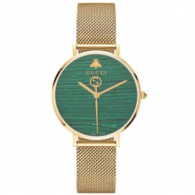 G-Timeless Coral Green Dial Men's Watch